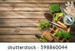 Gardening Tools  Seeds And Soi...