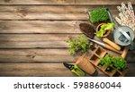 gardening tools  seeds and soil ... | Shutterstock . vector #598860044