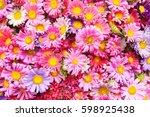 Beautiful Flower Background....