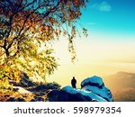 professional photographer takes ... | Shutterstock . vector #598979354