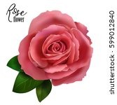 red rose with green leaves ... | Shutterstock .eps vector #599012840