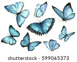 Stock photo blue butterflies set watercolor illustration 599065373
