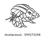 graphic hermit crab  vector   Shutterstock .eps vector #599275298