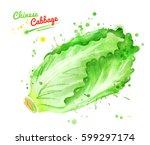 watercolor illustration of... | Shutterstock . vector #599297174