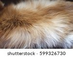 fox fur background   Shutterstock . vector #599326730