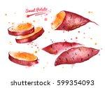 watercolor illustration of... | Shutterstock . vector #599354093