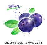 watercolor illustration of... | Shutterstock . vector #599452148