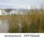 Young bamboo thicket at pond shore, hotel buildings and snowy mountains on horizon - stock photo
