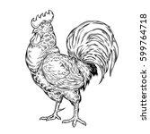 illustration of a cock ... | Shutterstock . vector #599764718