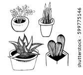 ink illustration. home flowers... | Shutterstock . vector #599775146