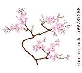Vertical  Branch Of Cherry...