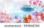 greeting card with orchids... | Shutterstock .eps vector #599848784