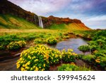 lovely view of blooming green... | Shutterstock . vector #599945624