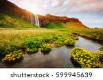 lovely view of blooming green... | Shutterstock . vector #599945639