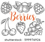 berry hand drawn vector set.... | Shutterstock .eps vector #599976926