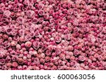 Stock photo flowers wall background with amazing roses 600063056
