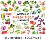 watercolor painted collection... | Shutterstock . vector #600274169