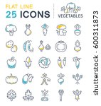 set  line icons in flat design... | Shutterstock . vector #600311873