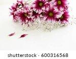 beautiful flowers | Shutterstock . vector #600316568