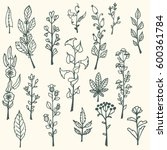 collection of handdrawn vector... | Shutterstock .eps vector #600361784