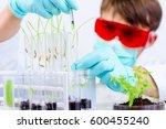 environmental sciences.... | Shutterstock . vector #600455240