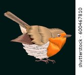 Embroidery Robin Bird. Vector...