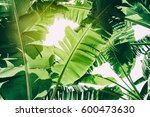 green tropical foliage texture ... | Shutterstock . vector #600473630