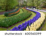 Arcs Of Colorful Flowers And...