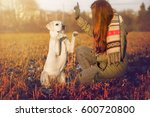 Young Woman And White Labrador...