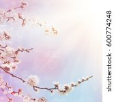 abstract seasonal spring floral ... | Shutterstock . vector #600774248