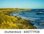 pacific ocean coast california... | Shutterstock . vector #600777938