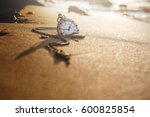 Small photo of Vintage pocket watch on golden sand beach during sunrise or sunset in summer, Time concept