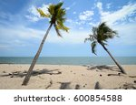 tropical sea with coconut trees ... | Shutterstock . vector #600854588