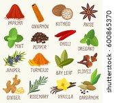 spices vector set | Shutterstock .eps vector #600865370