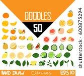handmade doodles citruses | Shutterstock .eps vector #600875294