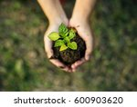 hand holding sprout for growing ...   Shutterstock . vector #600903620