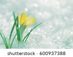 Bright Floral Background....