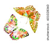 color butterflies  set... | Shutterstock . vector #601028360