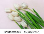 Bouquet Of White Cutting Tulip...