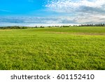 green field  landscape of... | Shutterstock . vector #601152410