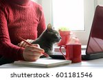 Stock photo girl in red working at the computer with a cat spending time together in a favorite setting 601181546