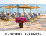 Sandy Beach With Flower Pot Of...