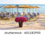 Sandy Beach With Flower Pot Of...