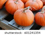 Harvested Orange Pumpkins At A...