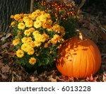 Autumn Display With Pumpkins...