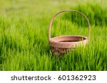 Empty Basket Green Meadow