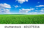 Image Of Green Grass Field And...