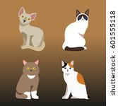 cat breed cute pet portrait... | Shutterstock .eps vector #601555118