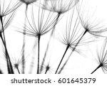 Abstract Macro Photo Of...