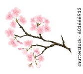 realistic sakura japan cherry... | Shutterstock .eps vector #601666913